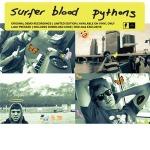 Surfer Blood - Python Demos